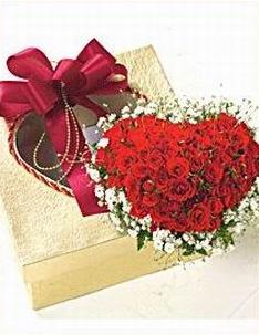 40 roses  HV-NH-L-355)