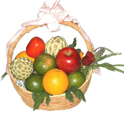 Giỏ trái cây HV-F-604(ID: HV-F-604)