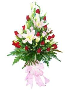 Chúc mừng Mẹ HV-GOL-0409_GOL300(ID: HV-GOL-0409_GOL300)