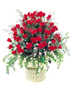 Chúc Mẹ nhiều sức khỏe HV-GOL-FB-GIOHOA-0018(ID: HV-GOL-FB-GIOHOA-0018)