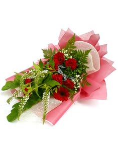 Sưởi ấm lòng con HV-0418_BOHOA-0036(ID: HV-0418_BOHOA-0036)