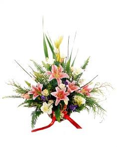 Chúc mừng HV-0409_HQ-0200(ID: HV-0409_HQ-0200)
