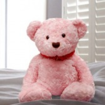 Pink Teddy Bear 1 (ID: TH-PINK-TED-BEAR-1)
