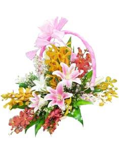 Happy Mother's Day HV-GOL-0409_GOL350LL)