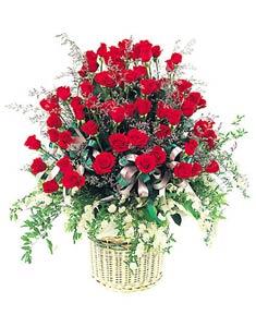 Chúc Mẹ nhiều sức khỏe HV-GOL-FB-GIOHOA-0018)