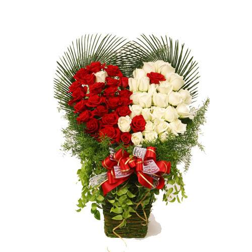 99 red and white roses in basket HV-NH-L-319)