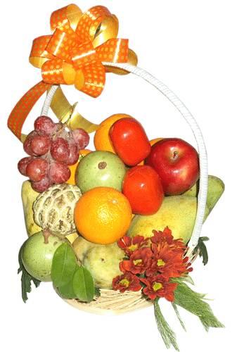Giỏ trái cây HV-F-608(ID: HV-F-608)