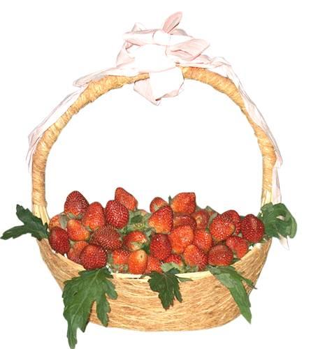 Giỏ trái cây HV-F-611(ID: HV-F-611)
