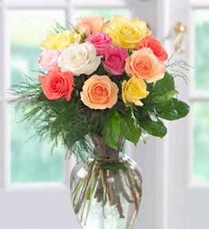 Hoa hồng HV-A-014(ID: HV-A-014)