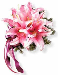 Hoa cưới - 062 HV-0418_HOACUOI-062(ID: HV-0418_HOACUOI-062)