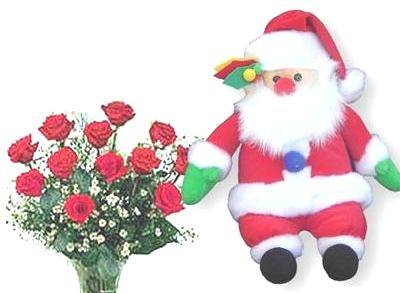 A Santa Claus 40cm, 12 red (or pink, white, yellow) rose bouquet, and a Christmas card (ID: HV-NH-N-5003)