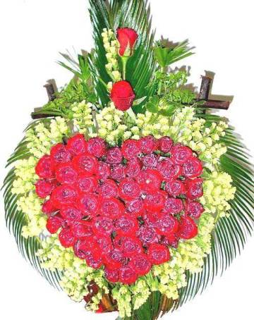 55 red roses, green, basket (ID: HV-NH-N-5326)
