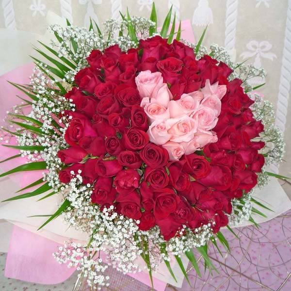 HV-NH-L-314 99 red and pink roses (ID: HV-NH-L-314)