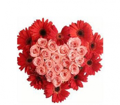 HV-NH-L-349  10 red gerberas and 20 pink roses in heart shape (ID: HV-NH-L-349)