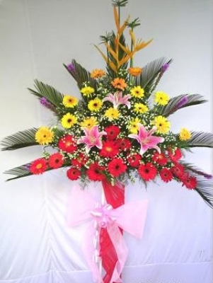 HV-NH-SP-472 - Yellow, red, orange gerberas, pink lilies, baby breaths, greens (height 1.6m) (ID: HV-NH-SP-472)