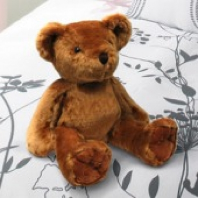 Deep Brown Teddy Bear 3 (ID: TH-TB-BROWN-3)